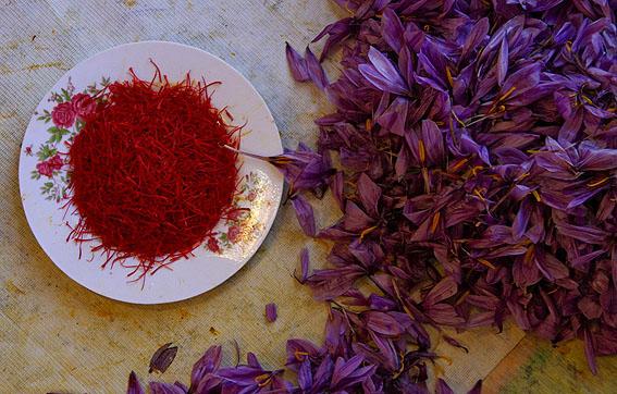 خواص گلبرگ زعفران