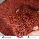 saffron poshal