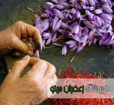 قیمت روز زعفران خشک اعلا در مشهد۱