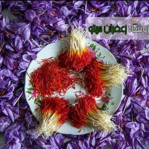 saffron-tehran1
