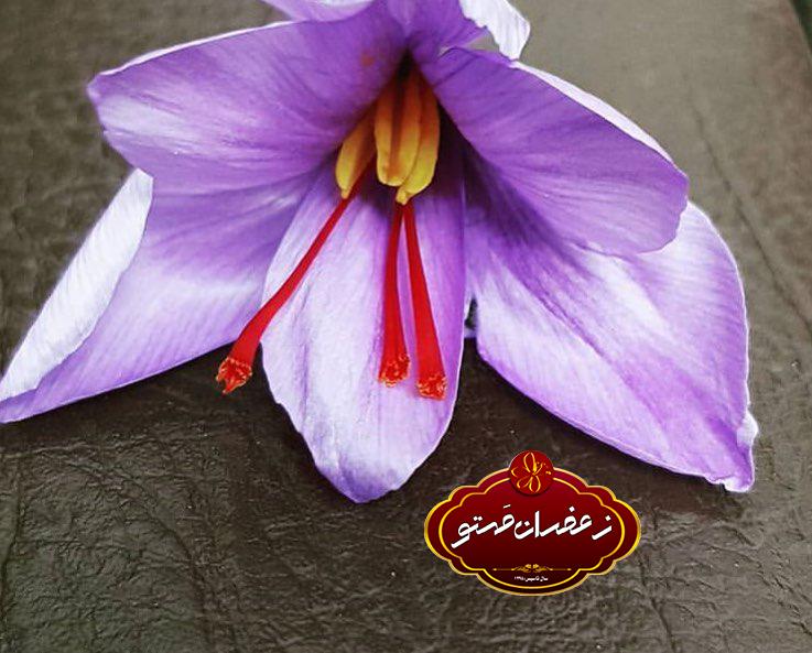 خواص-درمانی-و-غذایی-زعفران